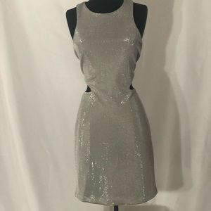 Metalic Silver Mini Dress
